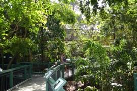 Free Zoo and Botanic Gardens Rockhampton