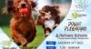 Doggie Playground Event