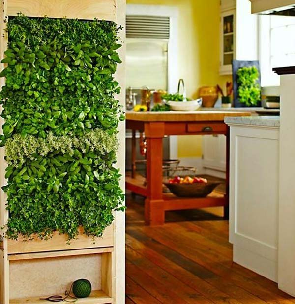 Wall Mounted Planters Indoor