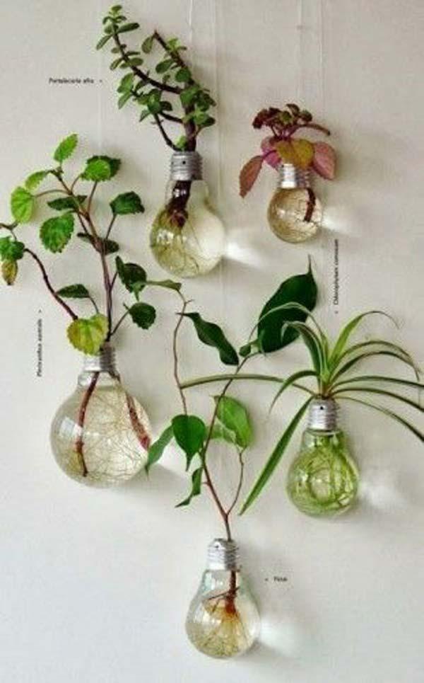 Planter Box Ideas