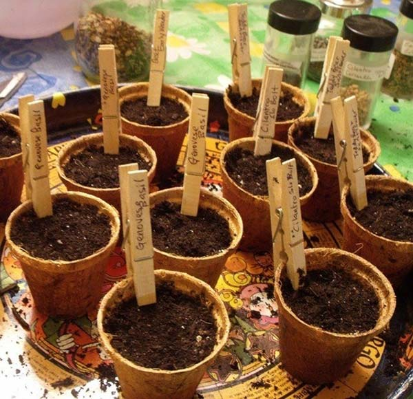 garden-marker-ideas-5