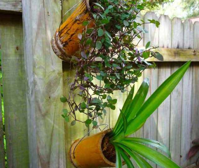 Create Your Bamboo Projects