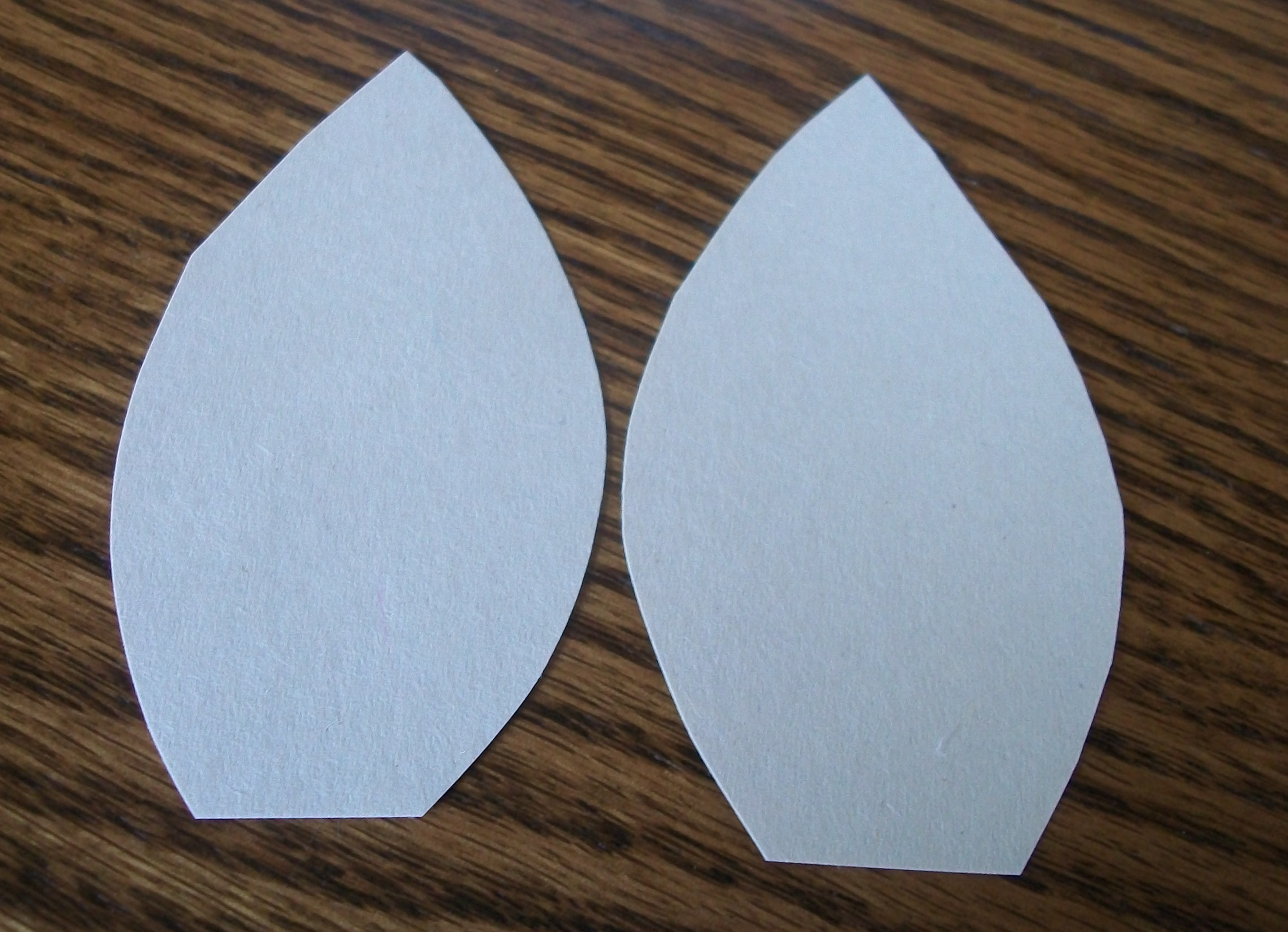 Cut Two Ears Out Of Your White Construction Paper They