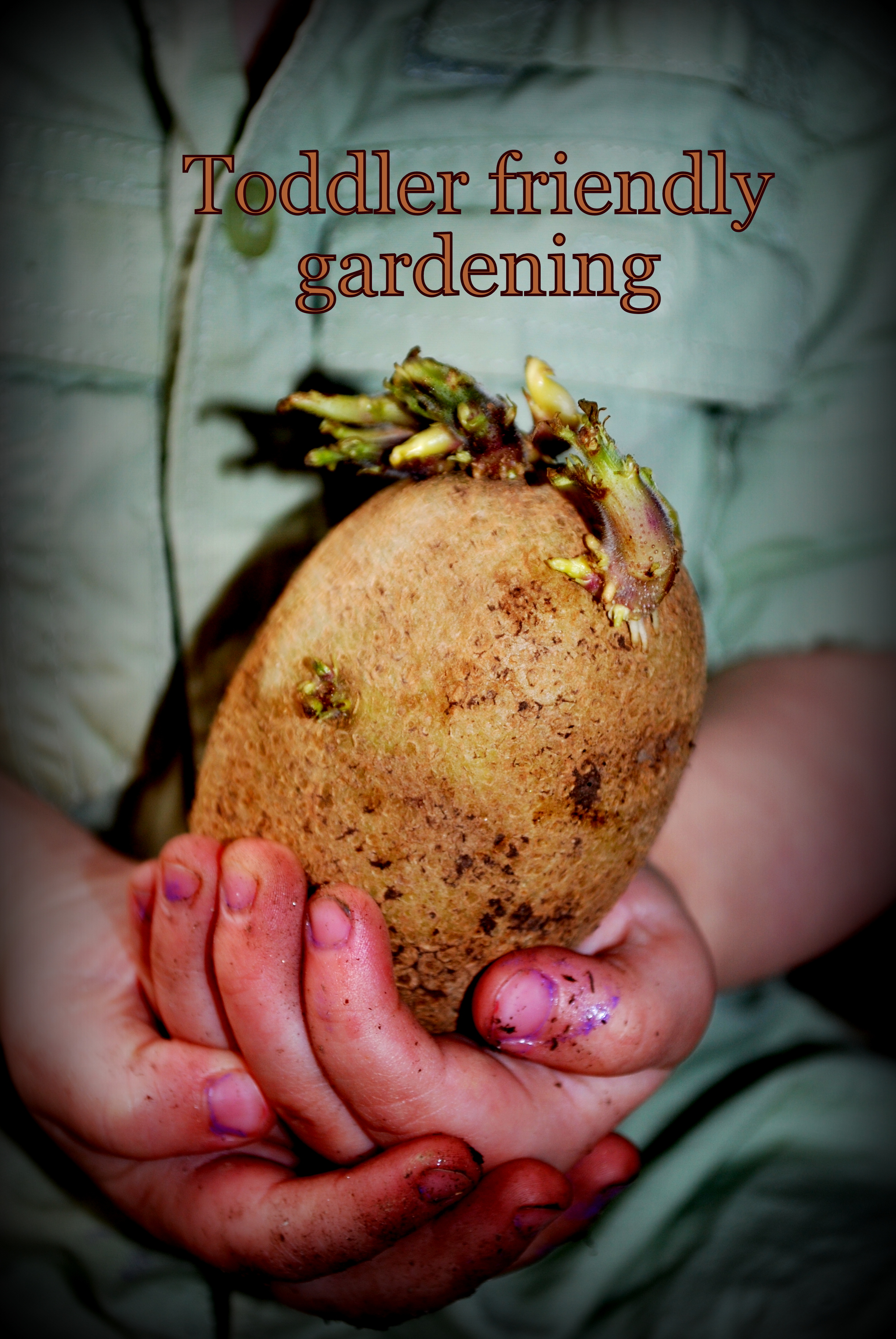 Toddler Friendly Gardening
