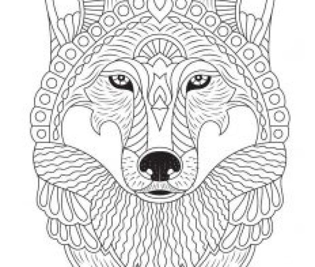 Fall Animal Adult Coloring Pages Woo Jr Kids Activities