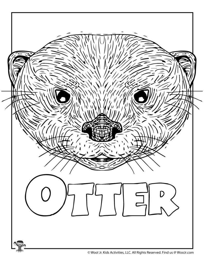 o is for otter coloring page  woo! jr. kids activities
