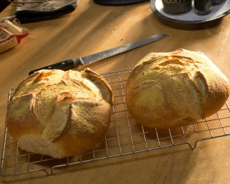 Two loaves, fresh from the oven