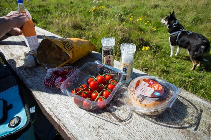 A morning visit to Tesco  furnished an adequate picnic