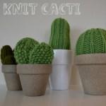 cactus breien