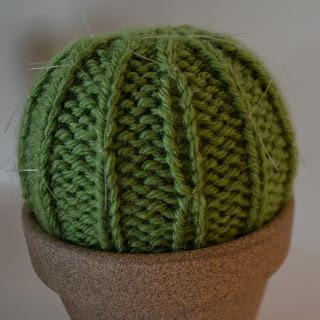 gebreide cactus