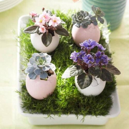 een eier tuintje via architectureartdesigns