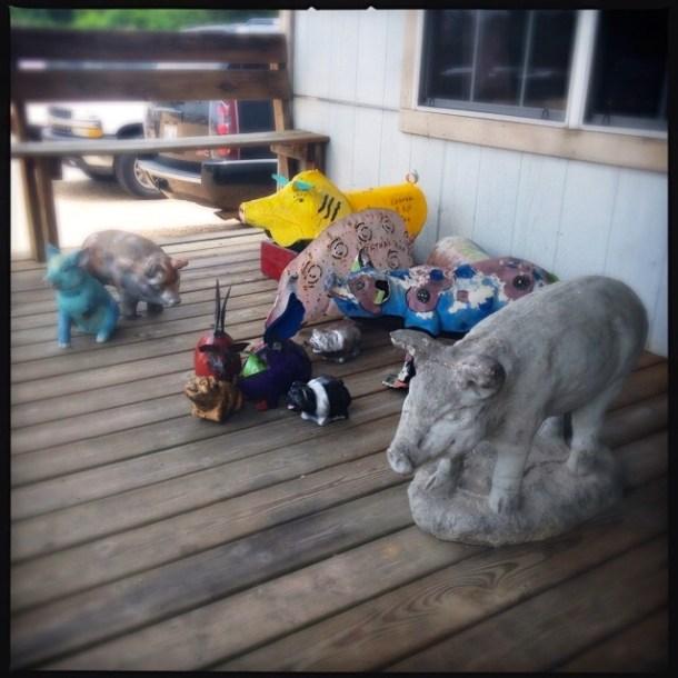 Porch Pigs