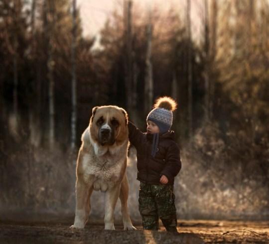 Acariciando perro, trabajos de luz