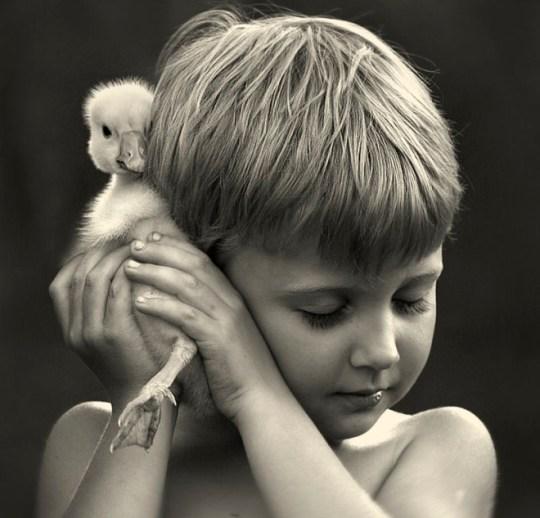 Foto sephia de niño con pato