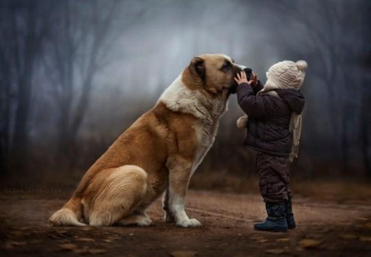 Niño acariciando perro fotografía