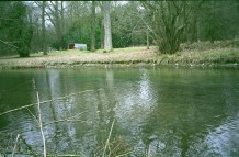 This is the river (if not the exact spot) where the Sandleford rabbits escaped from General Woundwort via boat.