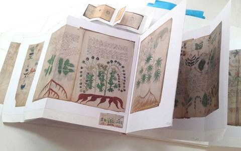 Voynich Comps & Papers