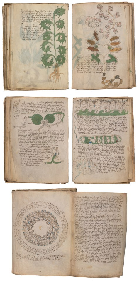 Voynich MS design pages