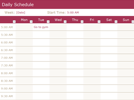 daily schedule template 33