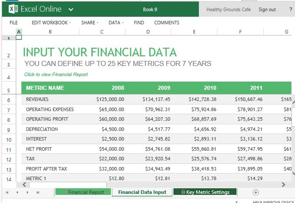 Financial Report Templates  Excel Pdf Formats
