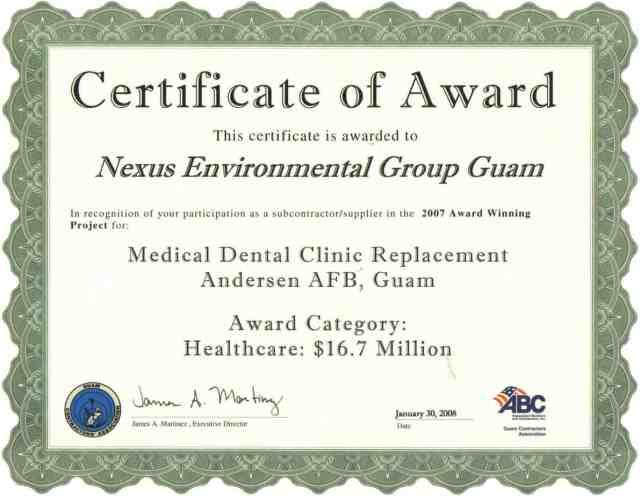 Award Certificate 6565