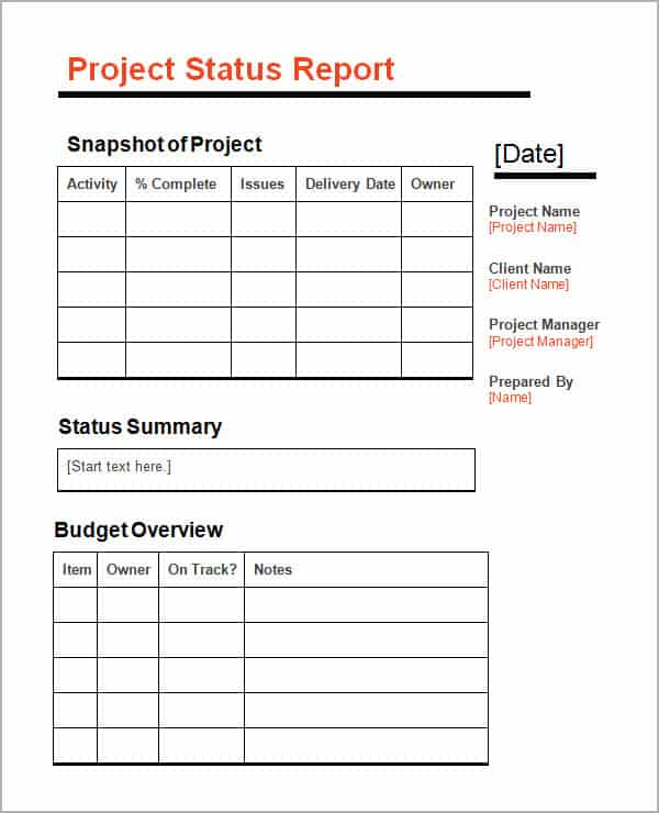 project update template word