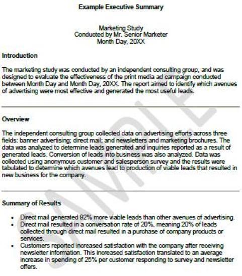 Executive Summary Templates  Excel Pdf Formats