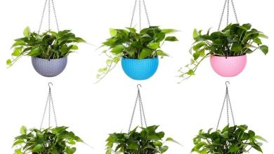 Photo of Renew Your Landscape Designs With Hanging Planters
