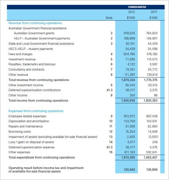Profit and Loss statement image 1