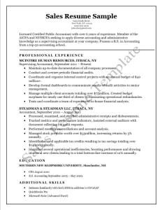 Sales-Resume-Template