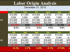 Labor Origin Analysis Template