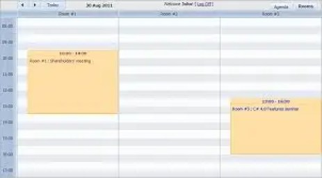 conference room schedule template preview 4