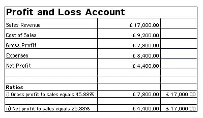 High Quality Profit And Loss Template 55  Profit And Loss Account Sample
