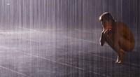 rain-room-at-moma-11ploaie