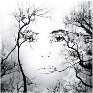 Face-Art-photography-32565250-554-555