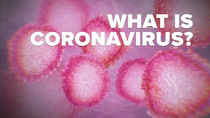 what is a coronavirus