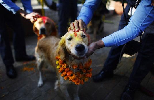 Vahana of Bhairava in Nepal | How Diwali Is Celebrated Outside India