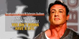 stallon_final_web