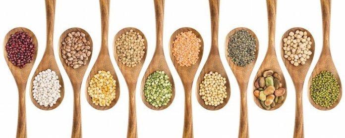types-of-legumes