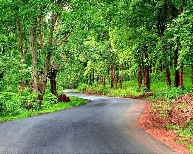 m Drive throiugh Bandipur - Top 10 Places to Visit in India Before You Turn 30