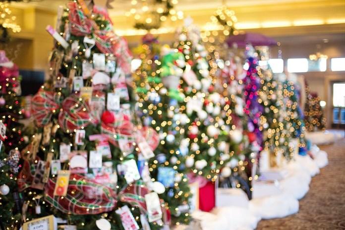 christmas-trees-1823938_1920