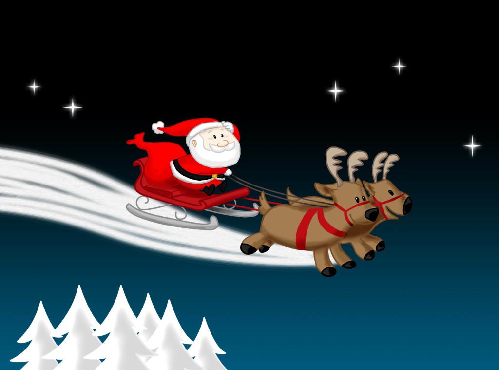 Christmas Reindeer at Christmas night