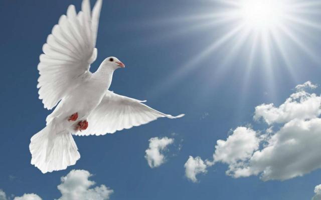 uWrLIP - Holy Spirit HD Wallpapers