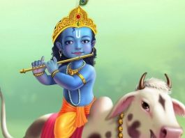 Beautiful Bal Krishna hd