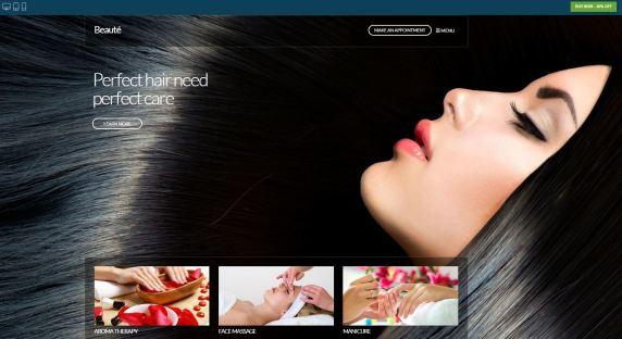 CSS Igniter Beaute WordPress Theme
