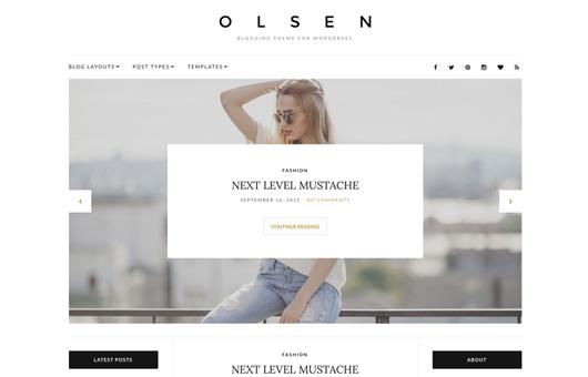 CSS Igniter Olsen WordPress Theme 1