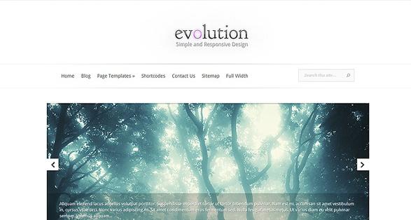 Elegant Themes Evolution WordPress Theme