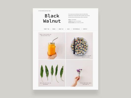 Elmastudio Black Walnut WordPress Theme