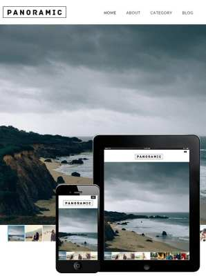 dessign panoramic responsive wordpress theme