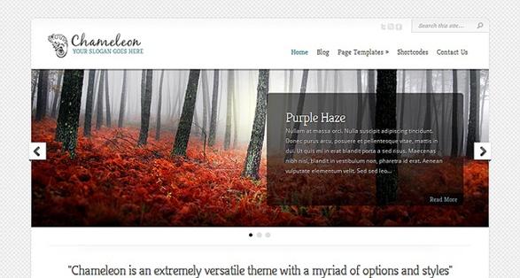 elegant themes chameleon wordpress theme